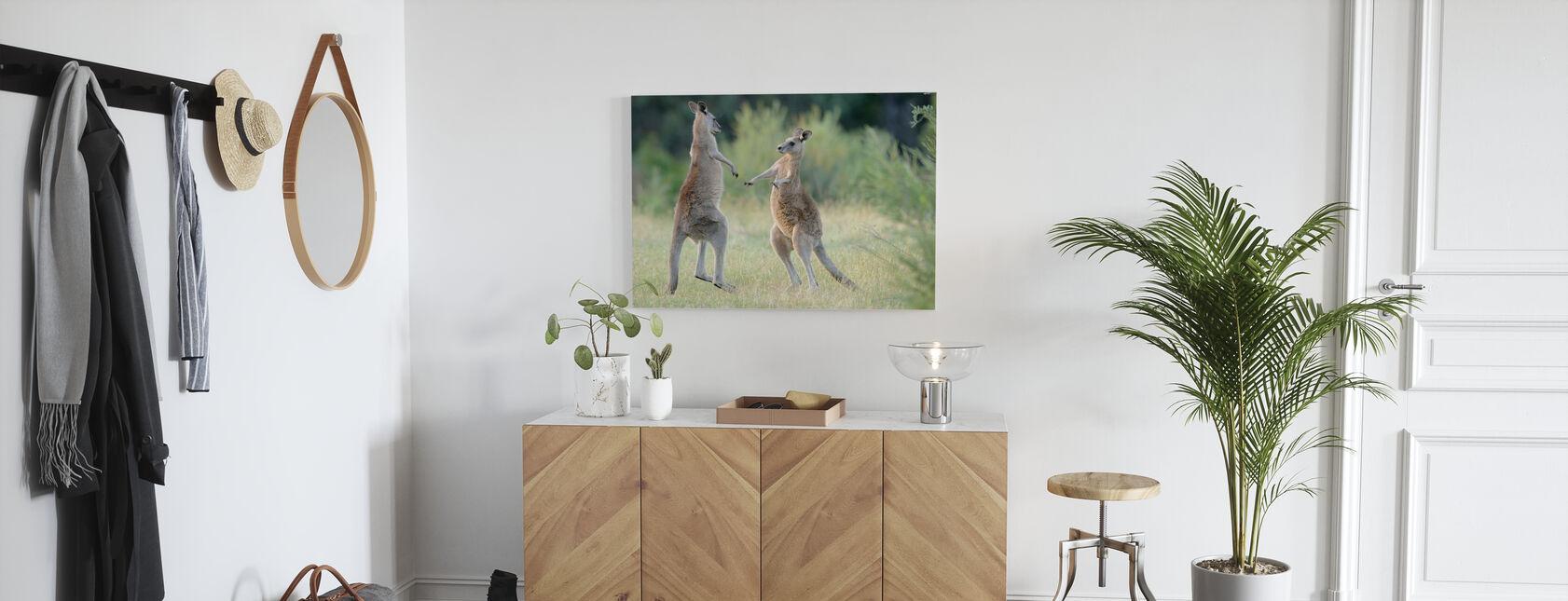 Oost-Grijze Kangoeroe - Canvas print - Gang