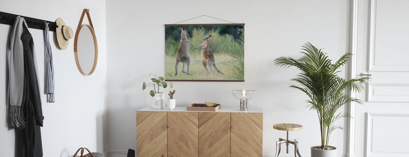 Eastern Grey Kangaroo - Poster - Hallway