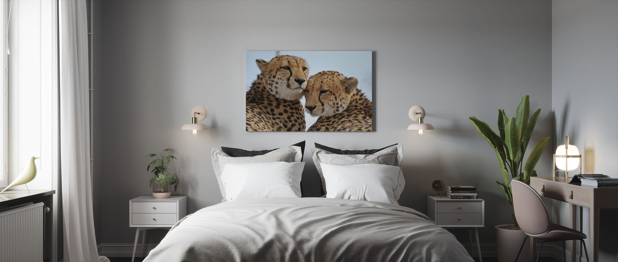 Cheetah Leaning Close - Canvas print - Bedroom