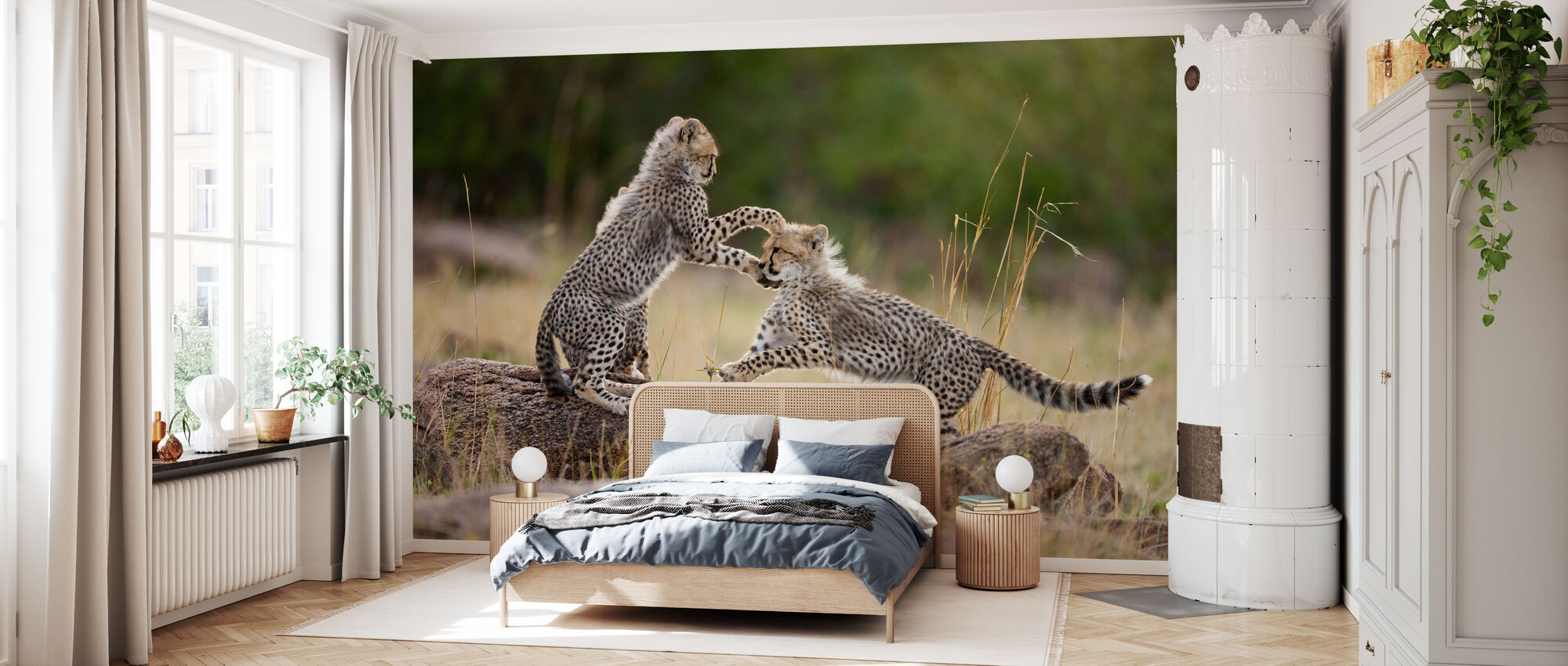 Cheetah Cubs Playing - Wallpaper - Bedroom