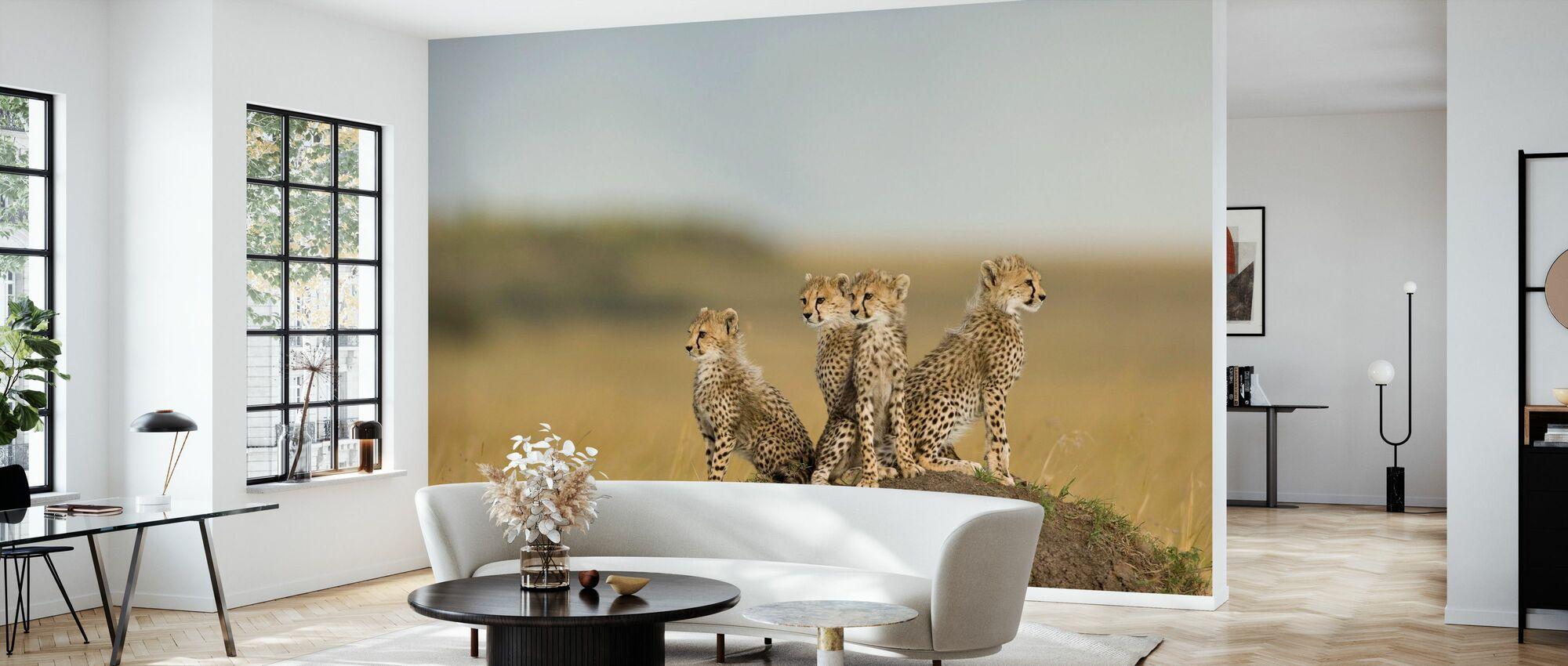 Cheetah Cubs - Wallpaper - Living Room