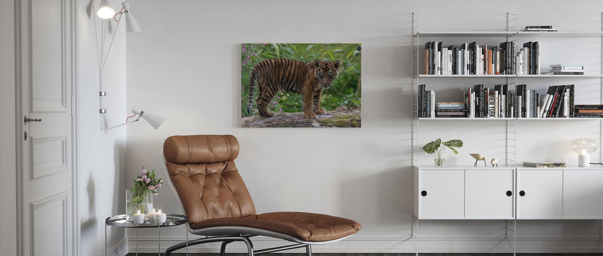 Juveniele Sumatraanse tijger - Canvas print - Woonkamer