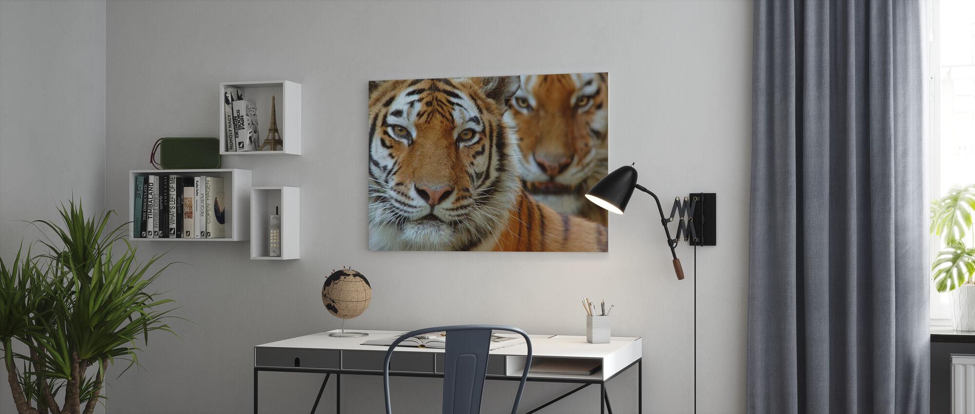 Twee Siberische tijgers - Canvas print - Kantoor