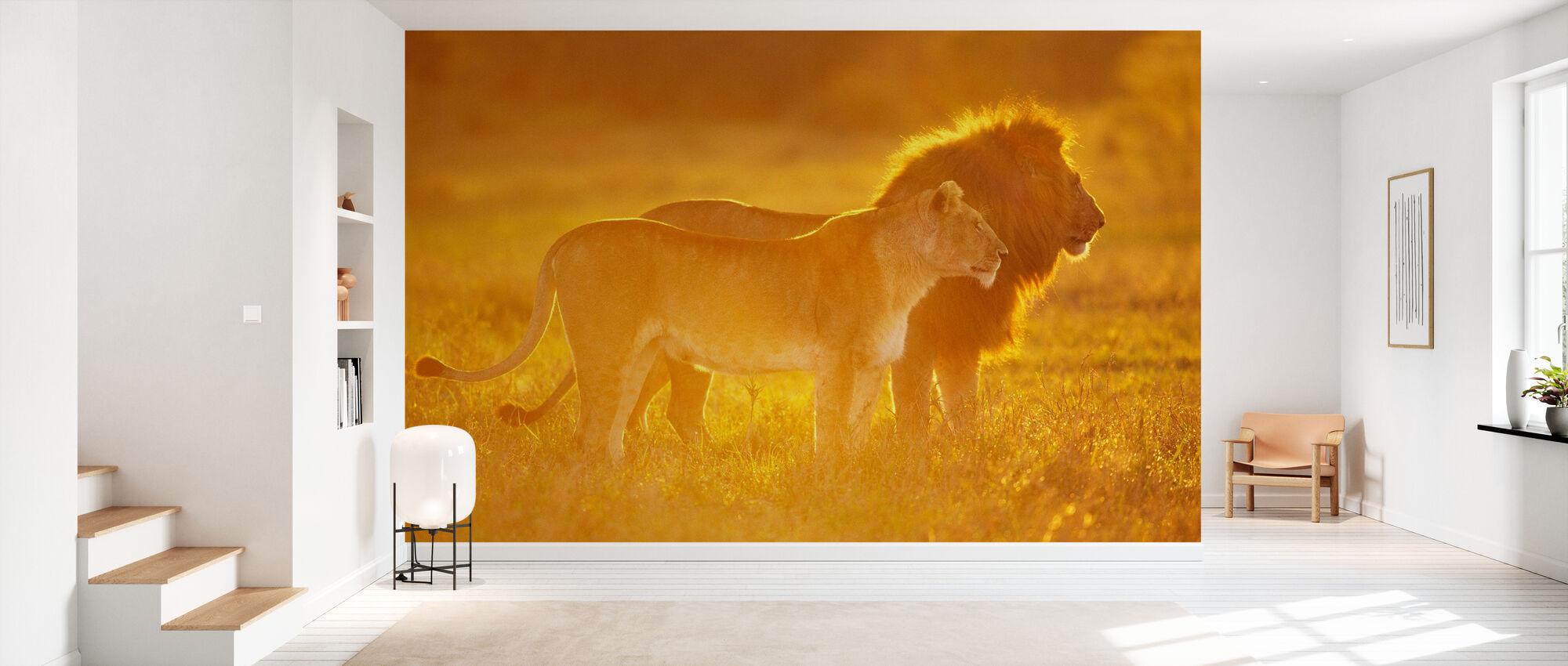 Manlig och kvinnlig lejon - Tapet - Hall