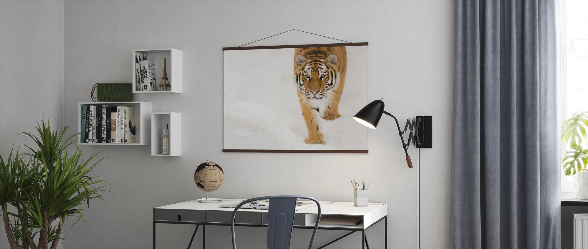 Siberian Tiger - Poster - Office