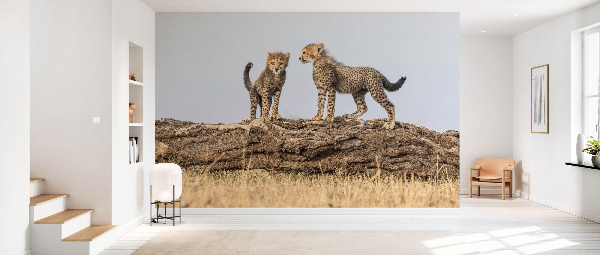 Cheetah Cubs II - Wallpaper - Hallway