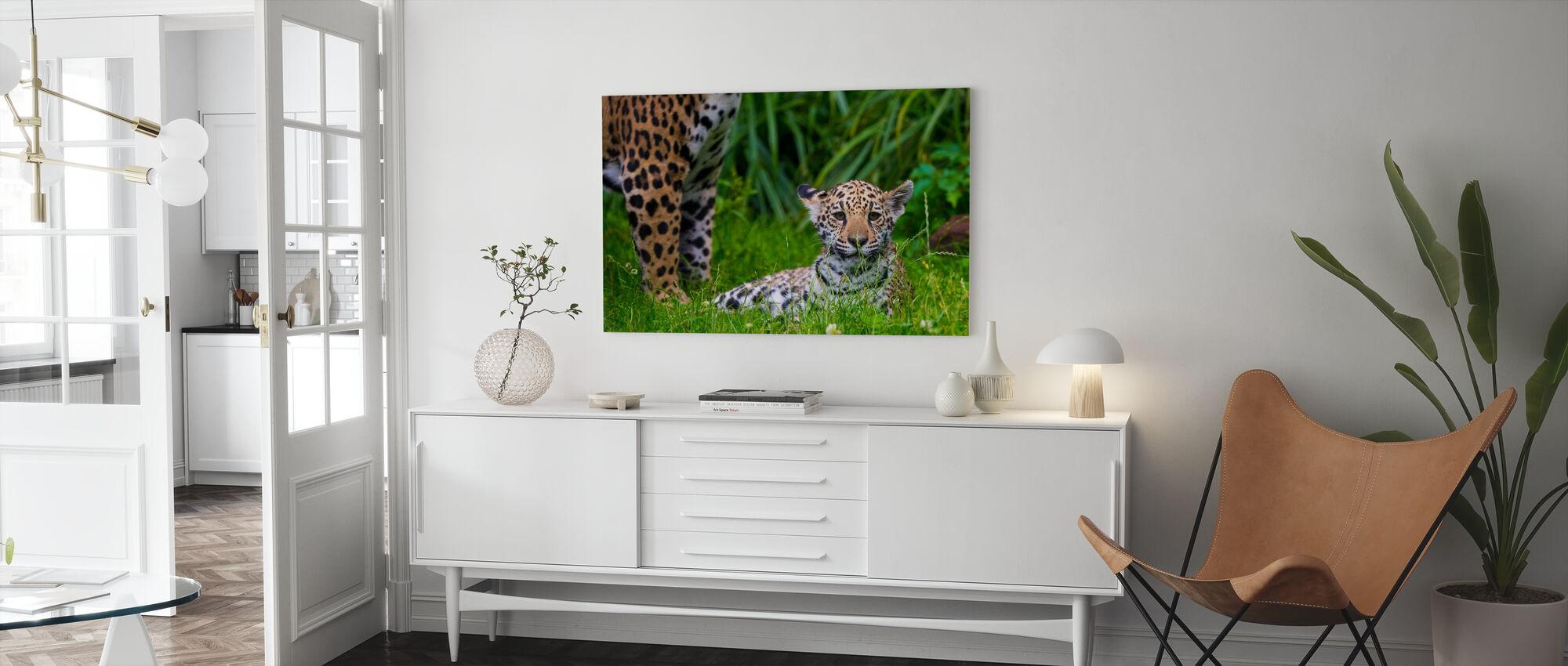 Jaguar welp - Canvas print - Woonkamer