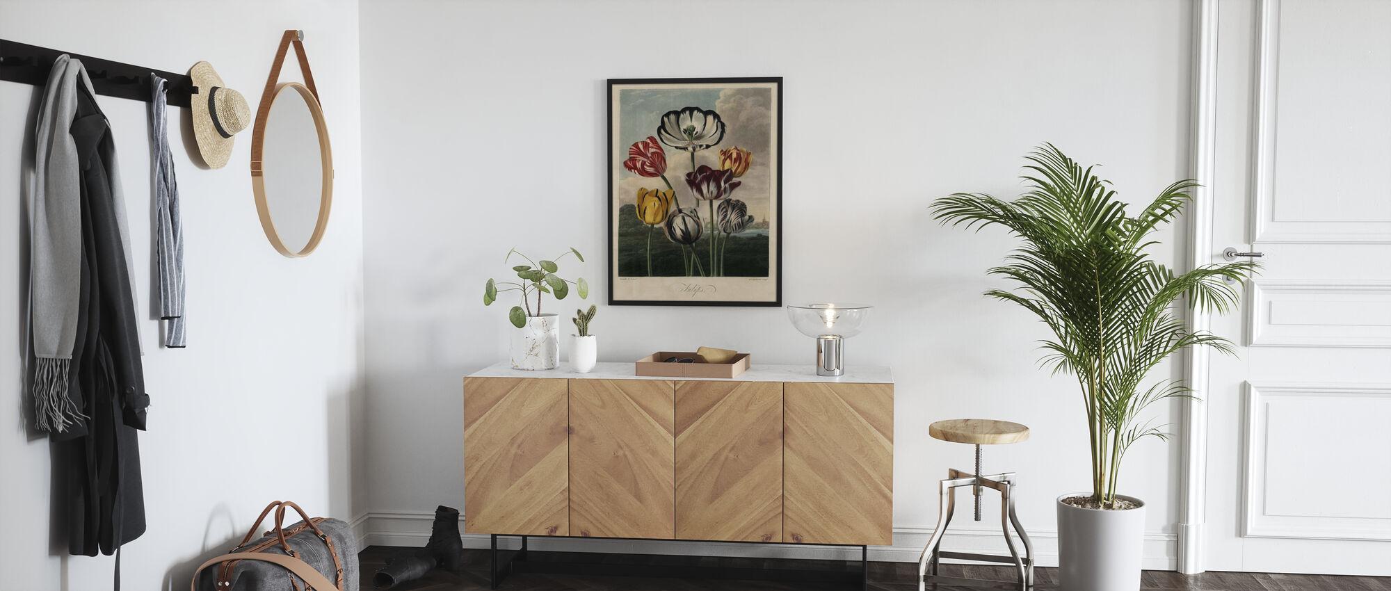 Tulip sorter - Poster - Hall