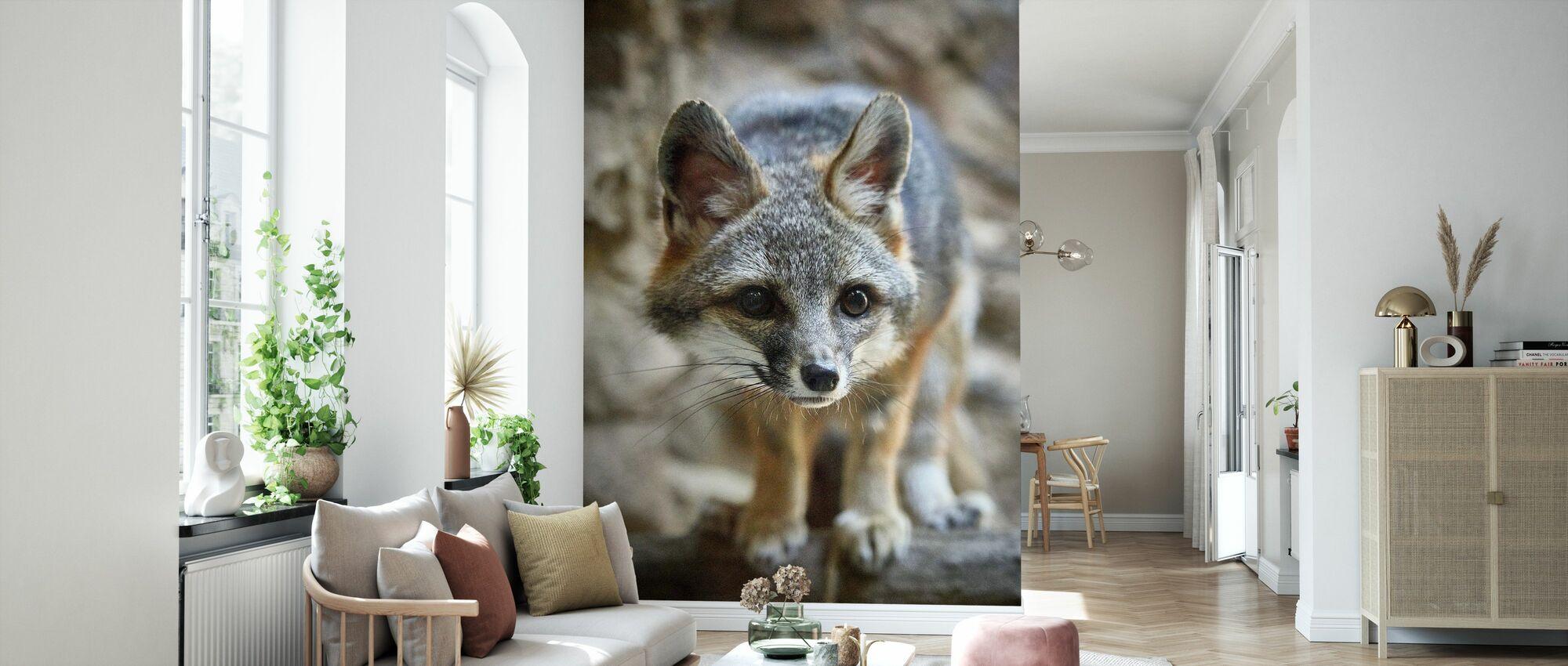 Lite Fox - Tapet - Stue