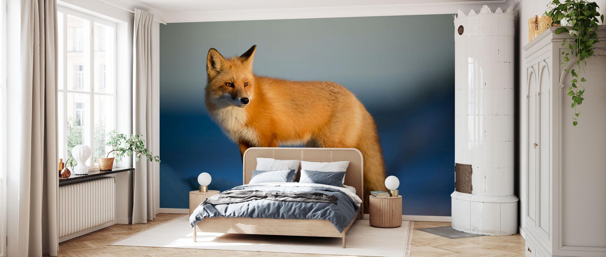 Stirring Fox - Tapet - Soverom