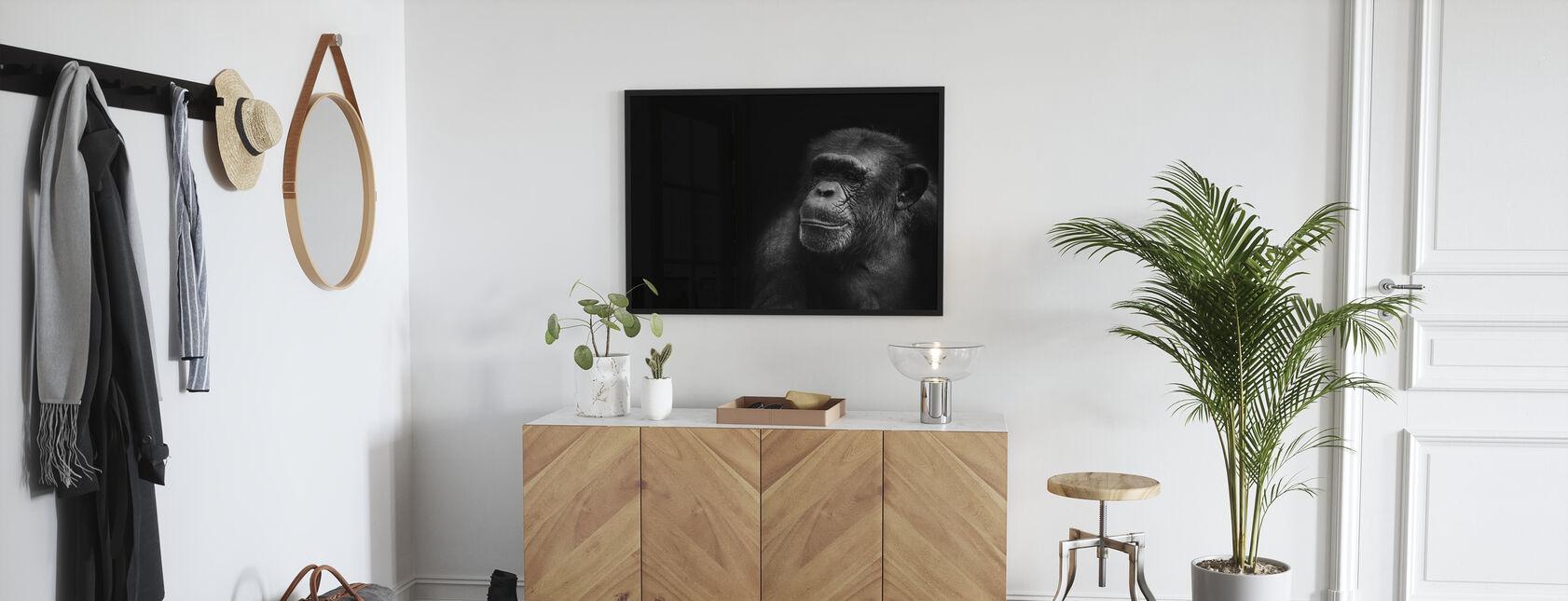 Monkey and Black - Poster - Hallway