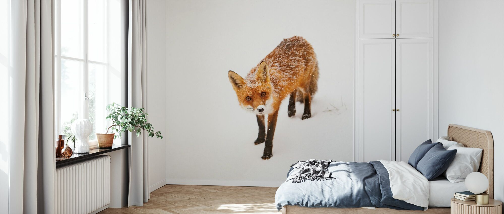 Red Fox II - Wallpaper - Bedroom
