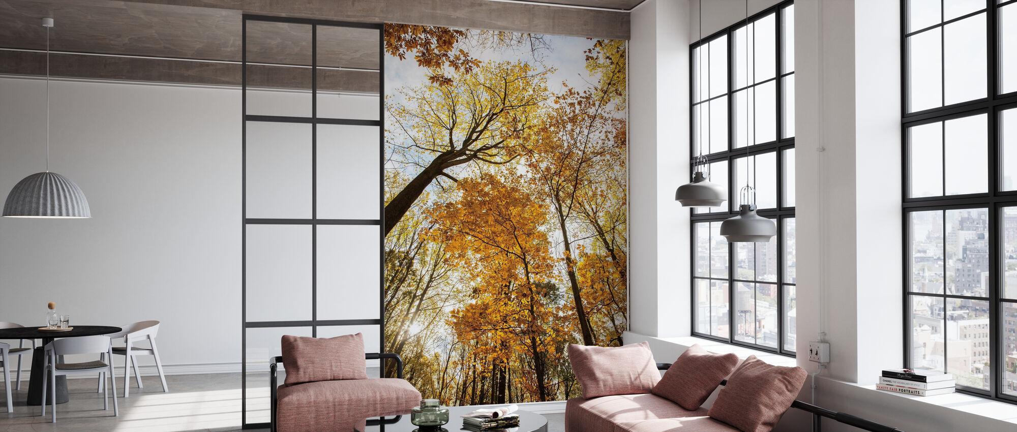 Towering Trees II - Wallpaper - Office