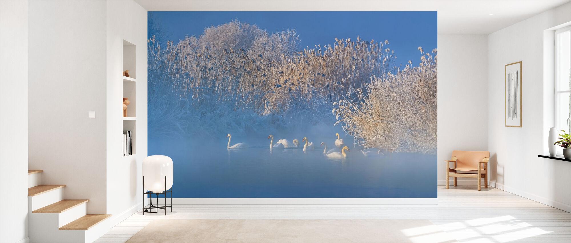 Blue Swan Lake - Wallpaper - Hallway