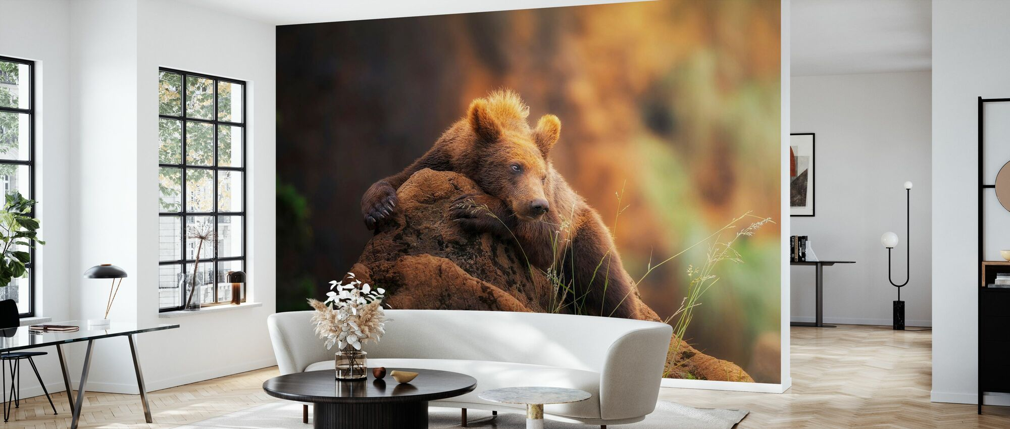 Brown Bear - Wallpaper - Living Room