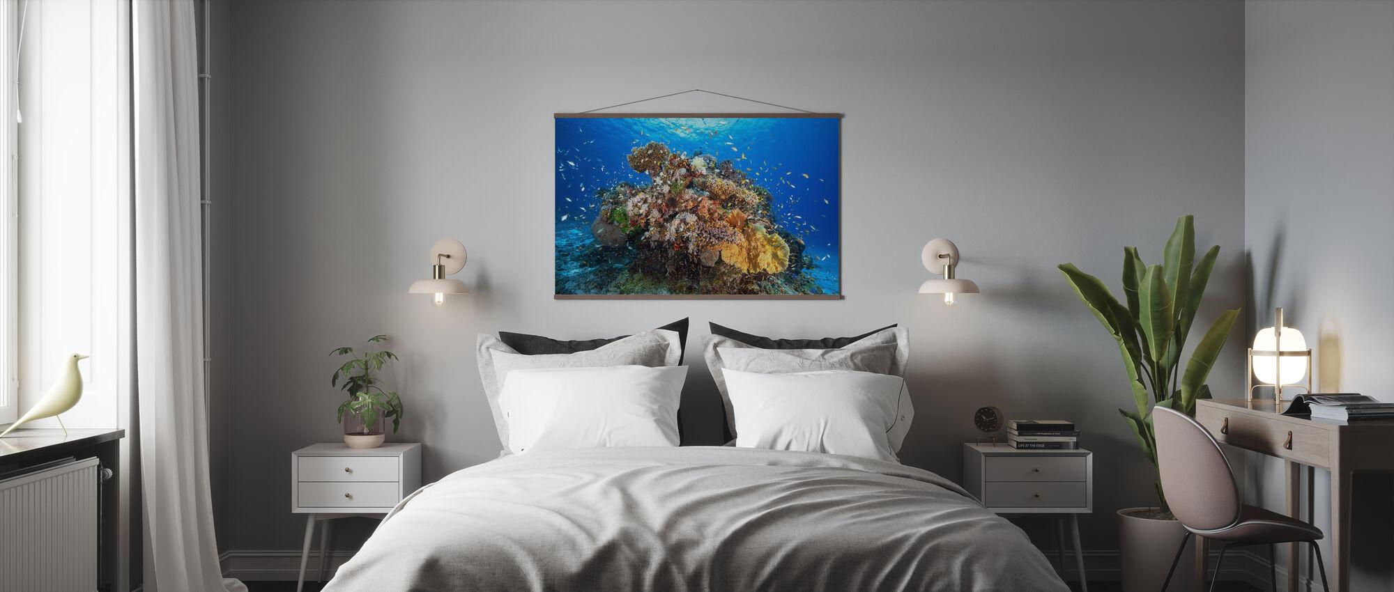 Marine Biodiversity - Poster - Bedroom