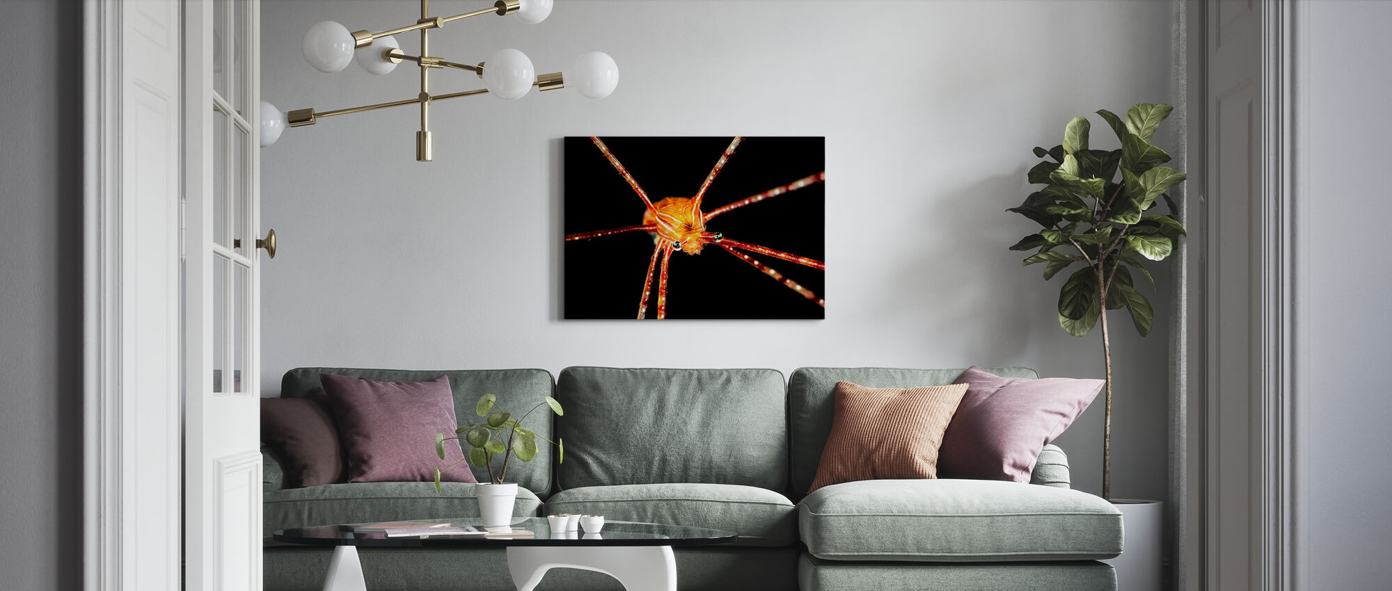 edderkopp knebøy hummer - Lerretsbilde - Stue