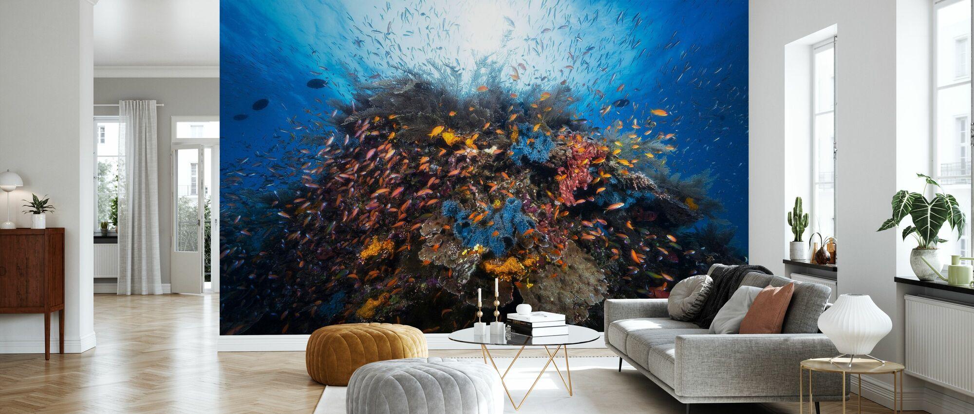 Life Explosion - Wallpaper - Living Room