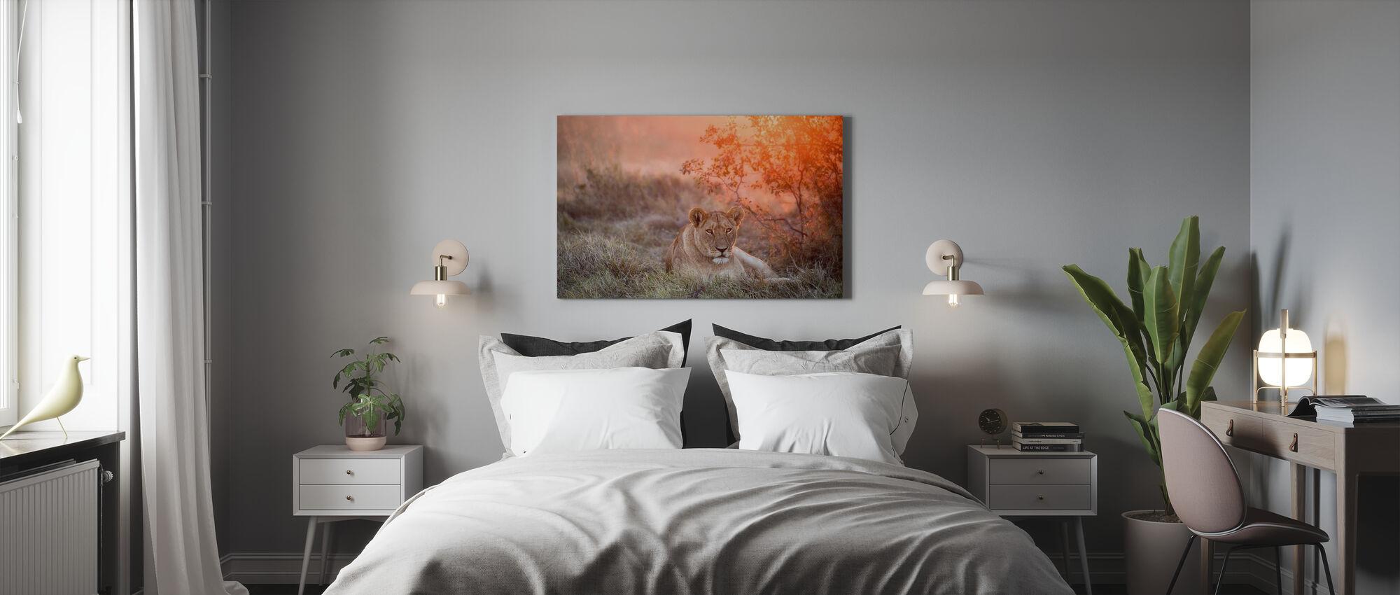 solnedgang løvinne - Lerretsbilde - Soverom