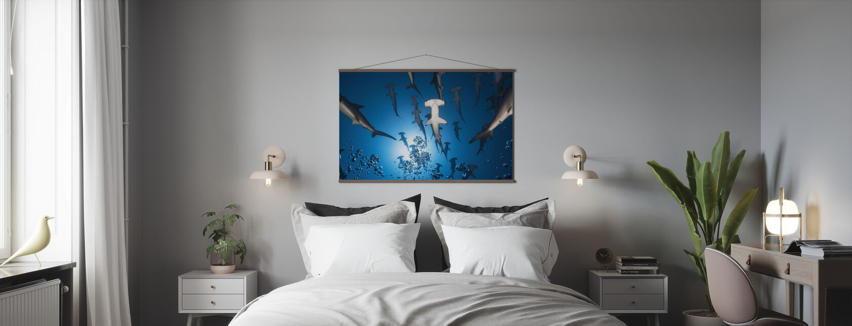 Hammerhead Shark - Poster - Bedroom