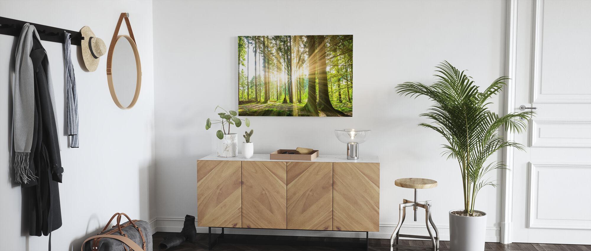 Skog med sol - Lerretsbilde - Gang