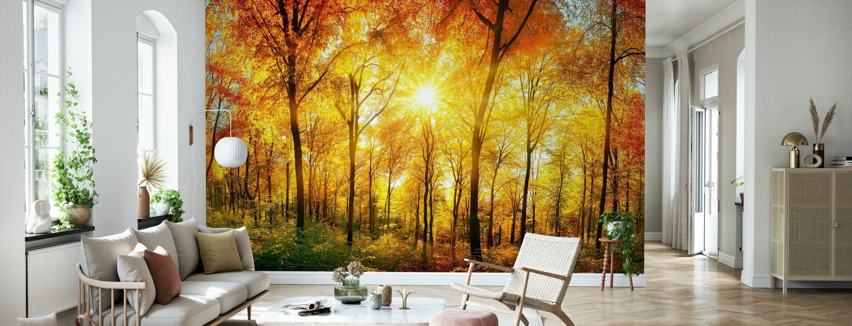 Autumn Forest - Wallpaper - Living Room