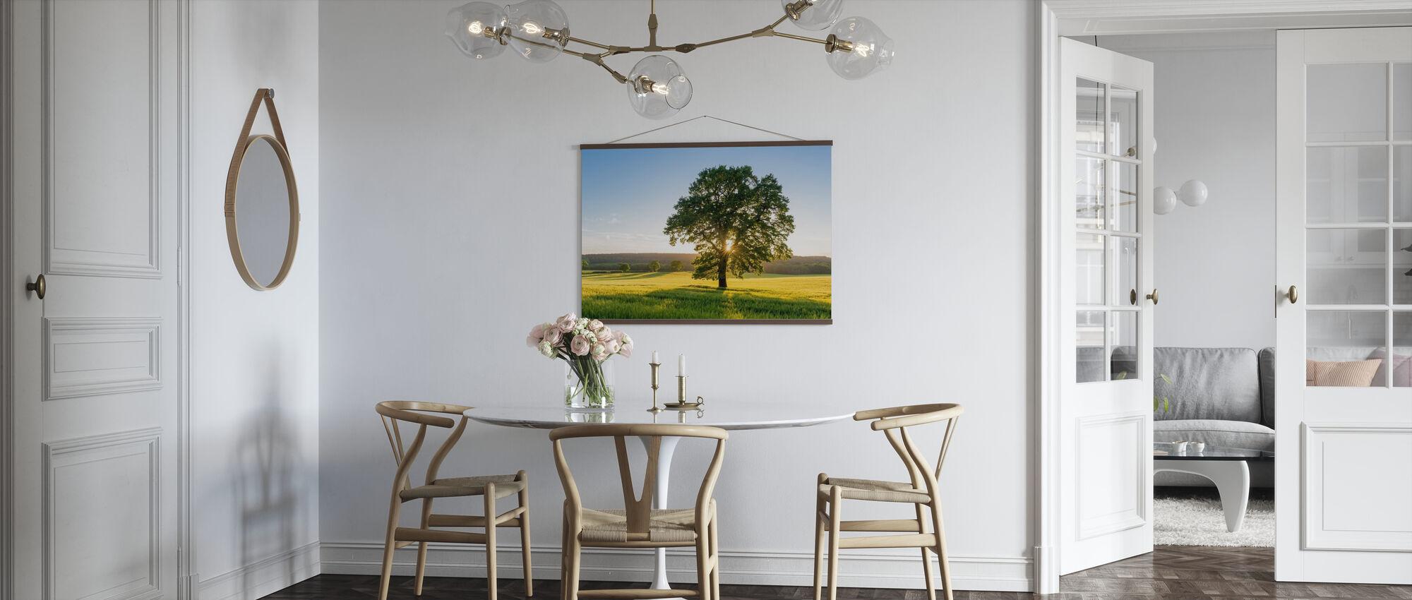 Sommer felt solnedgang - Plakat - Køkken