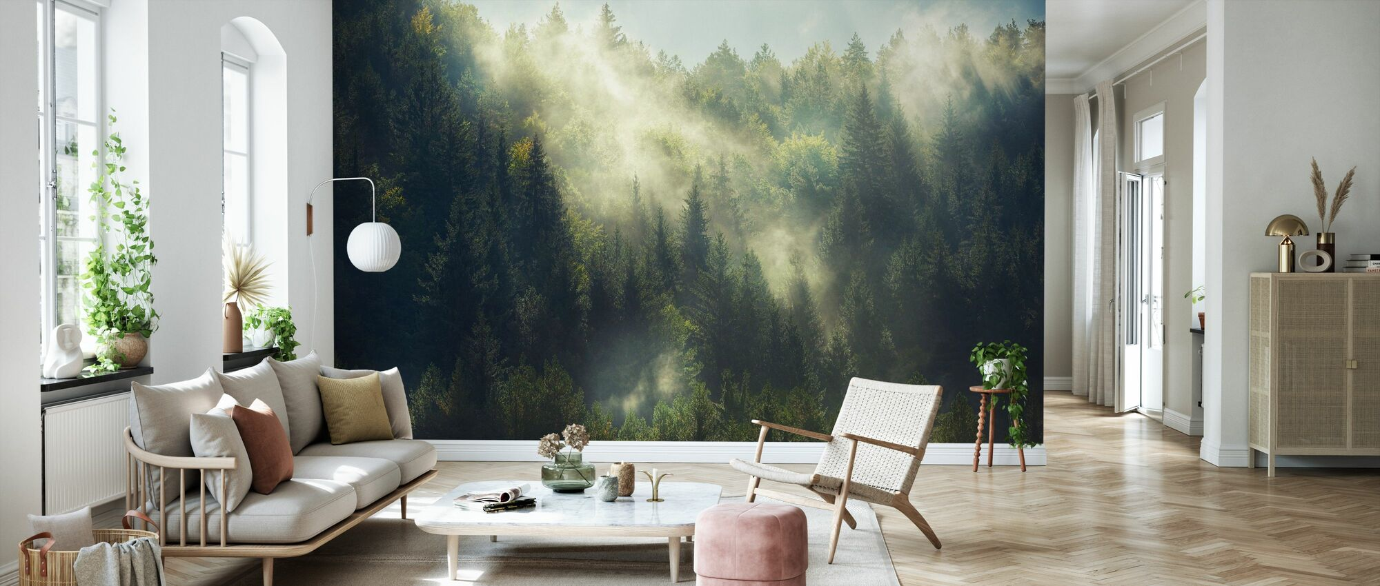 Misty Forest - Wallpaper - Living Room