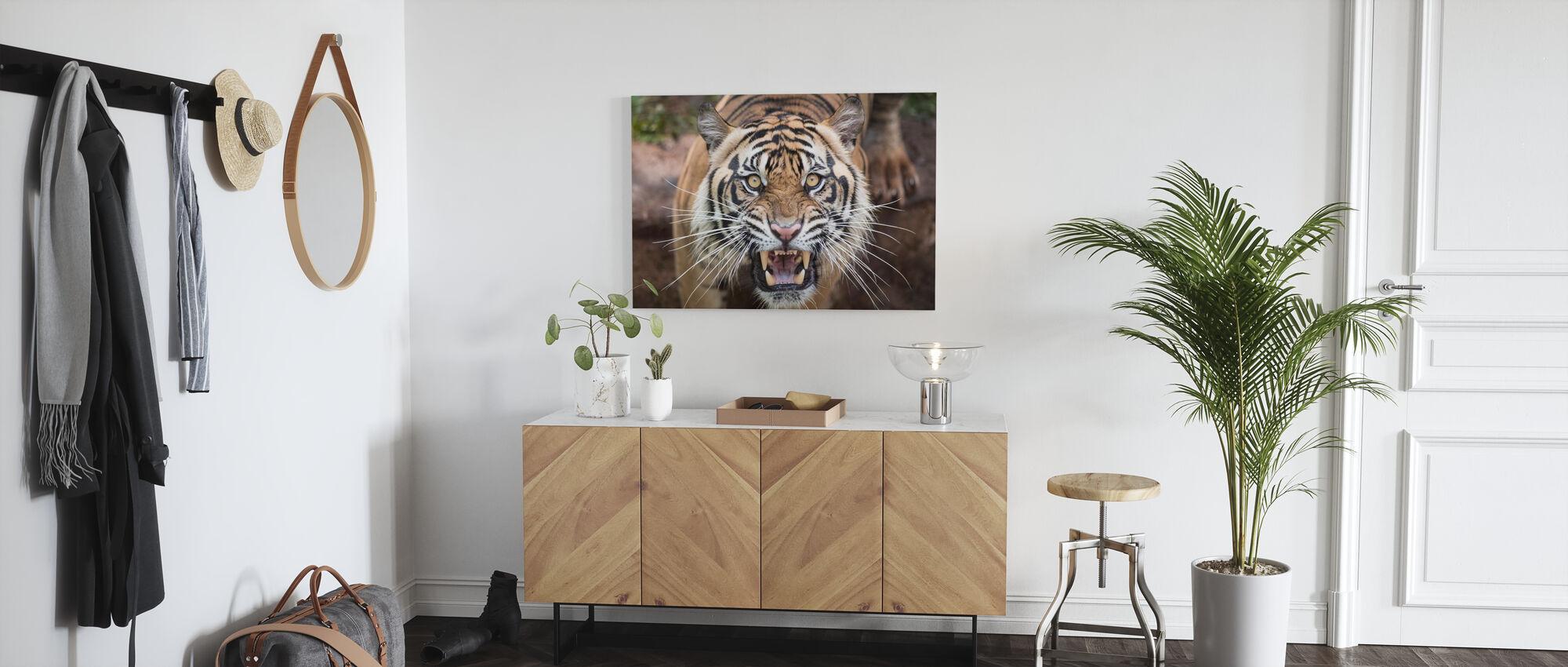 brølende tiger - Lerretsbilde - Gang