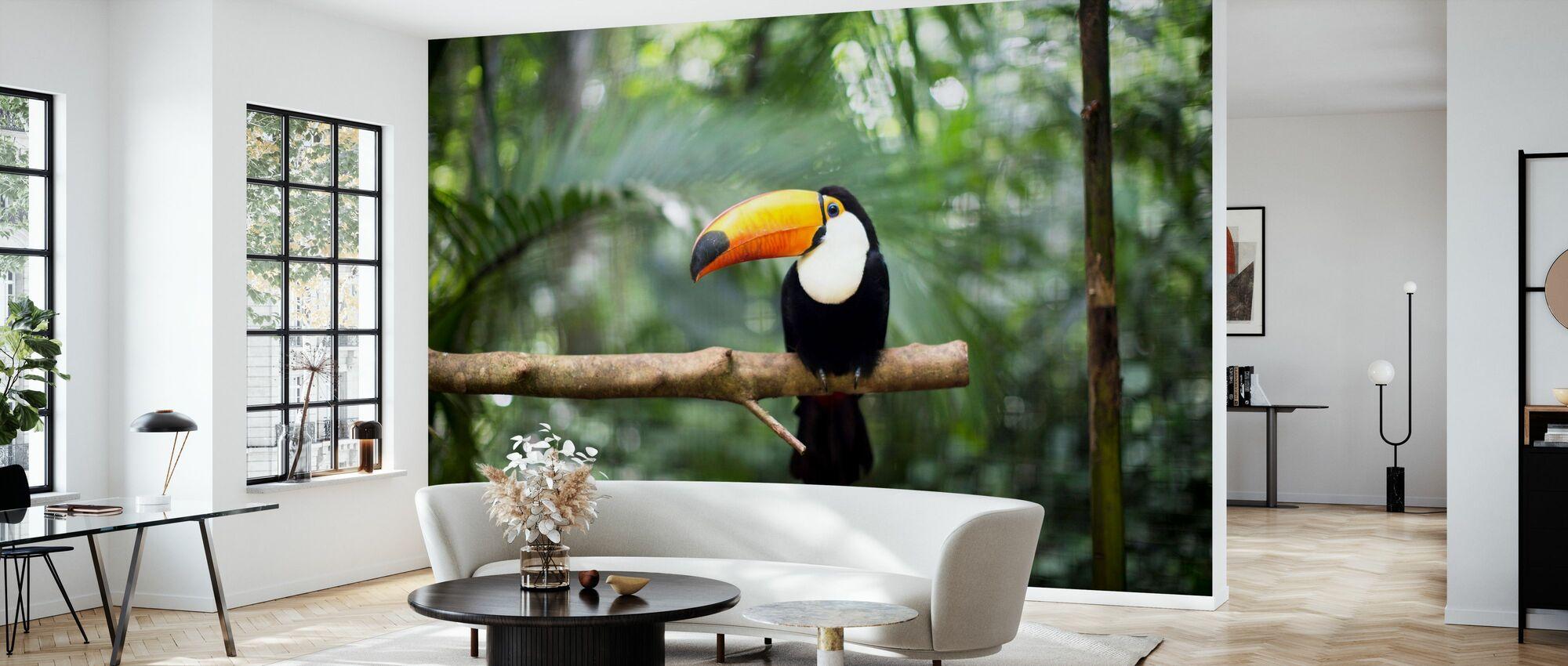 Tukan auf dem Zweig - Tapete - Wohnzimmer