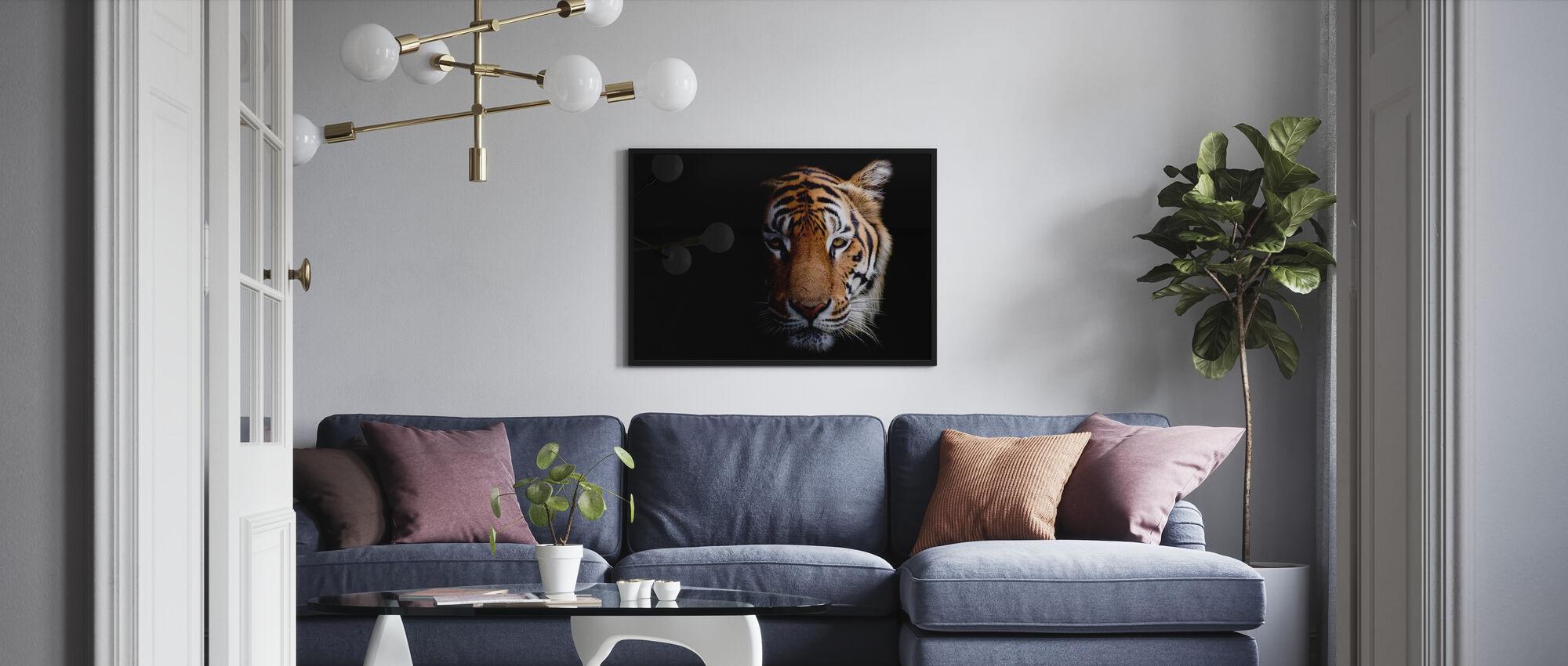 Tiger - Plakat - Stue