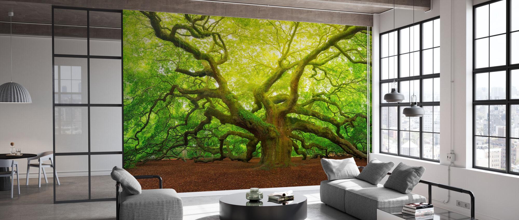 Angel Oak - Wallpaper - Office