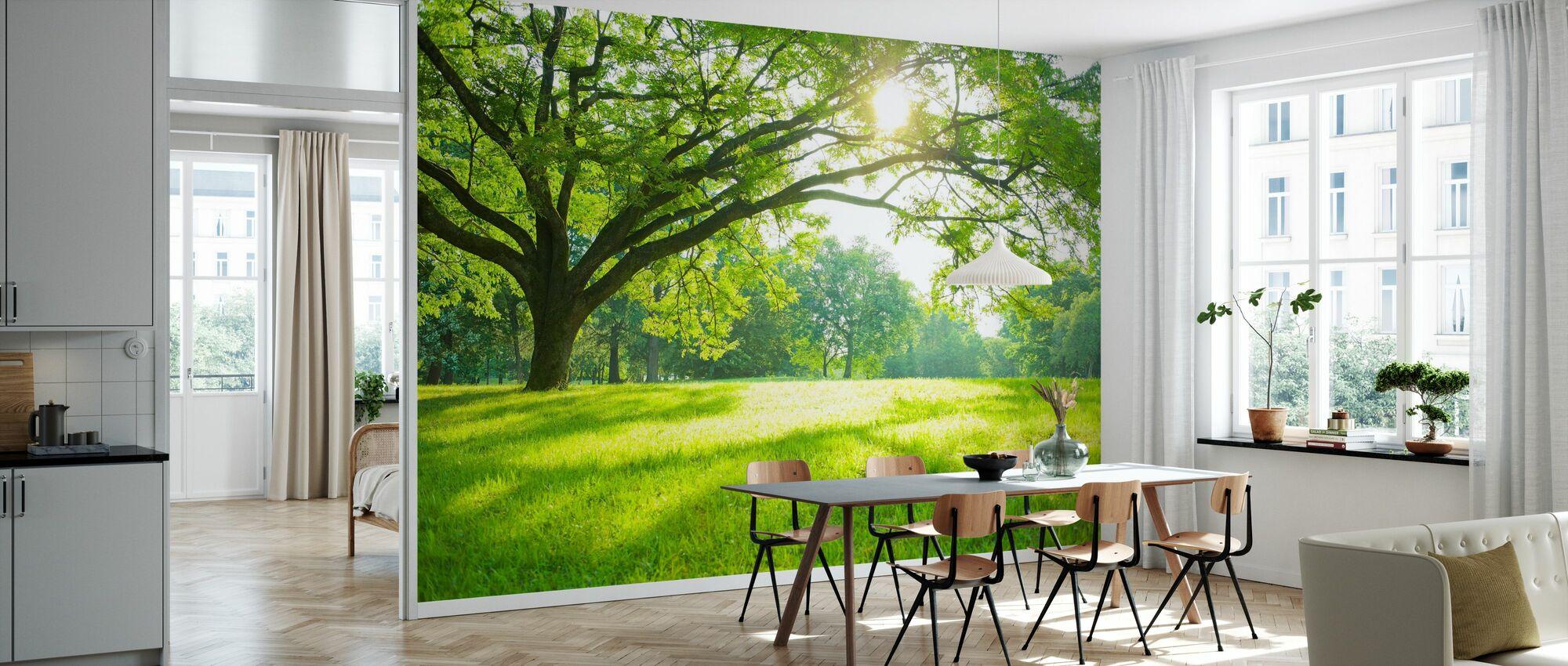 Summer Park - Wallpaper - Kitchen