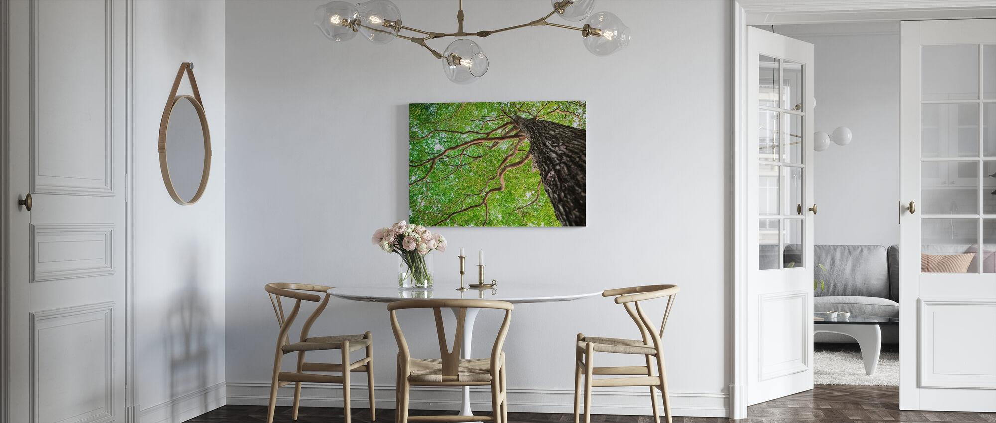 Grønt blad Træ - Billede på lærred - Køkken