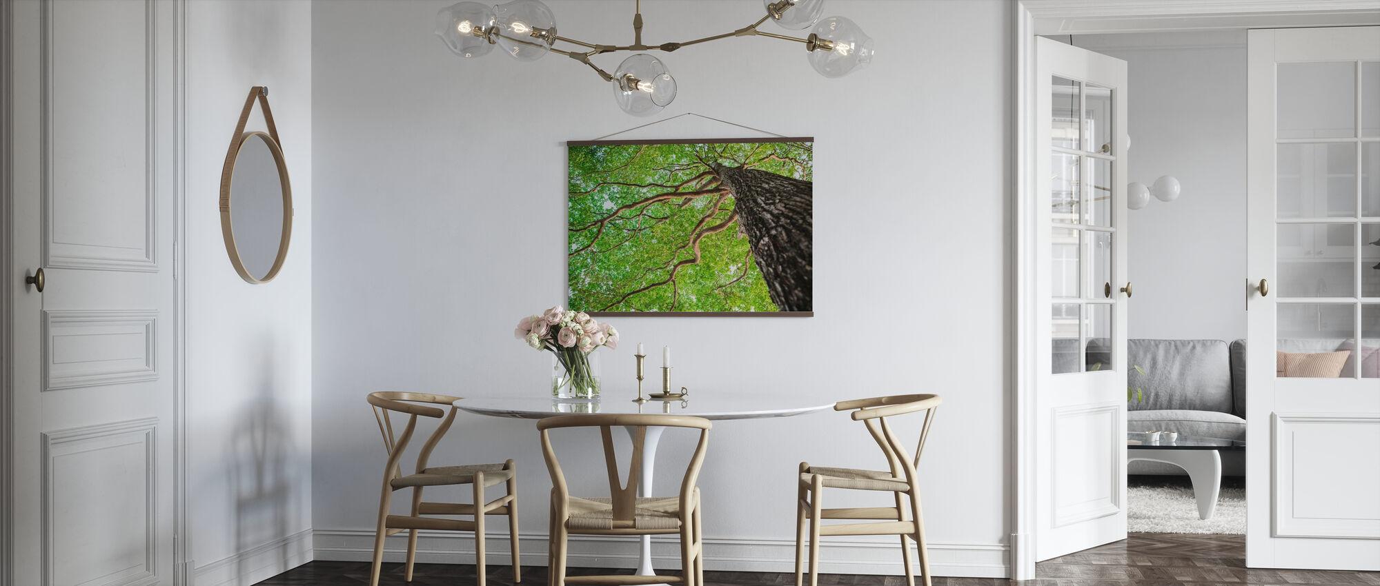 Grüner Blattbaum - Poster - Küchen
