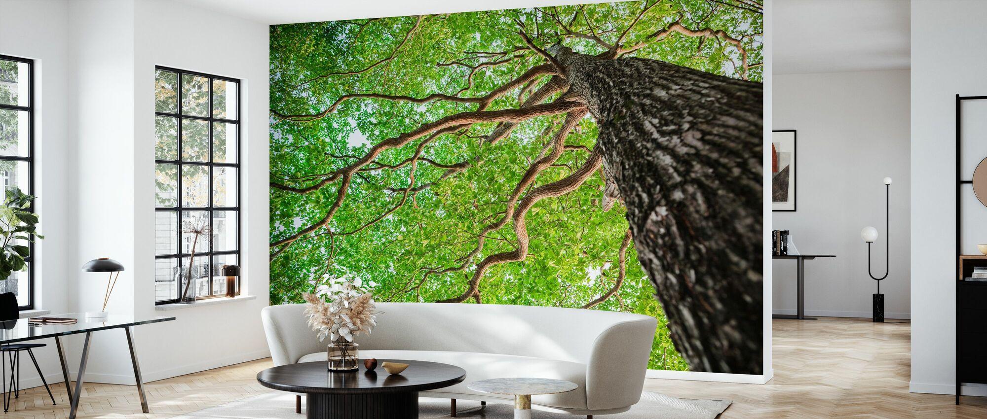 Green Leaf Tree - Wallpaper - Living Room