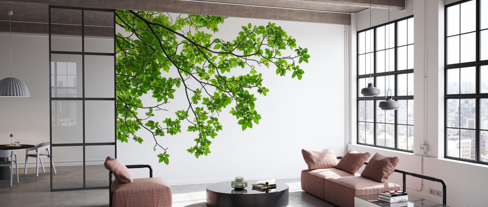 Baum Blätter und Äste - Tapete - Büro