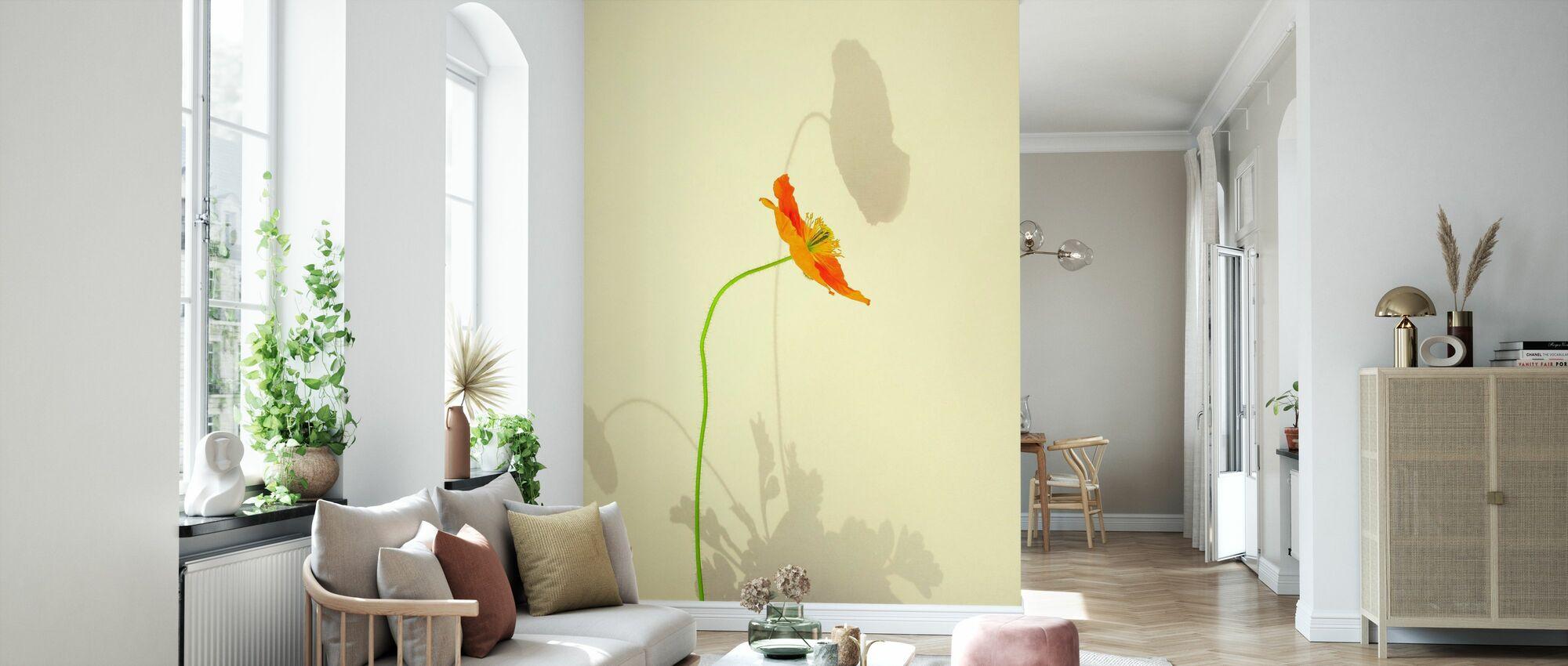 Orange Poppy - Wallpaper - Living Room