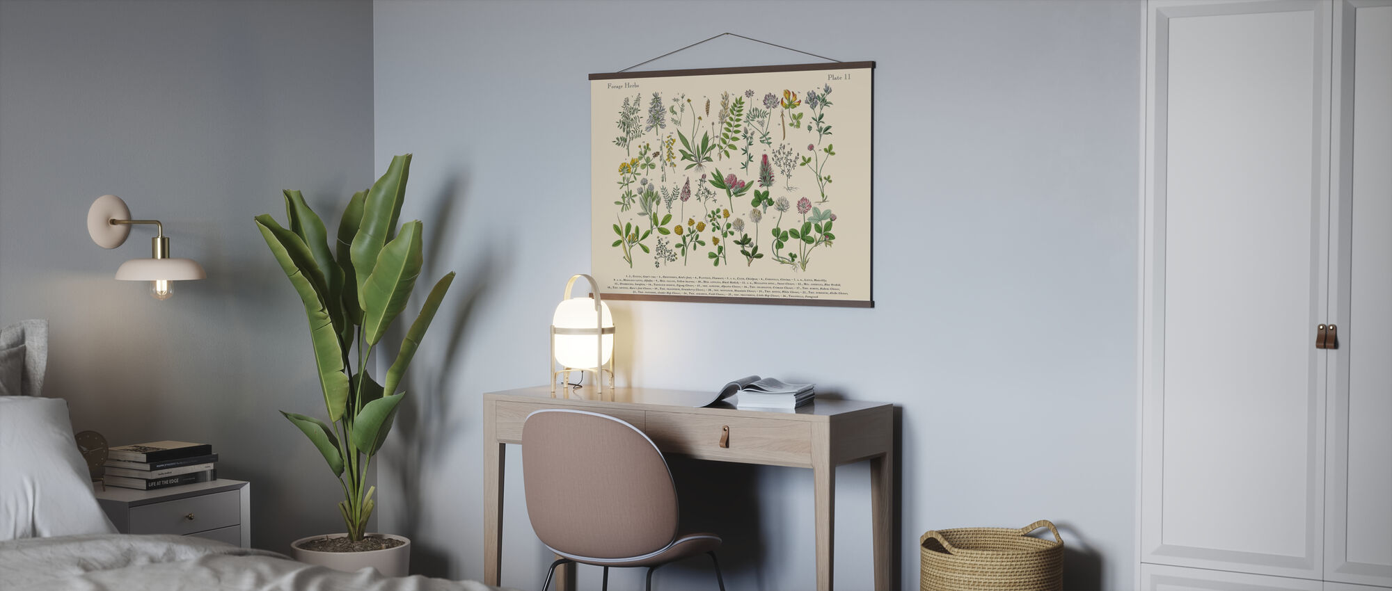 Herbs and Spices - Poster - Office