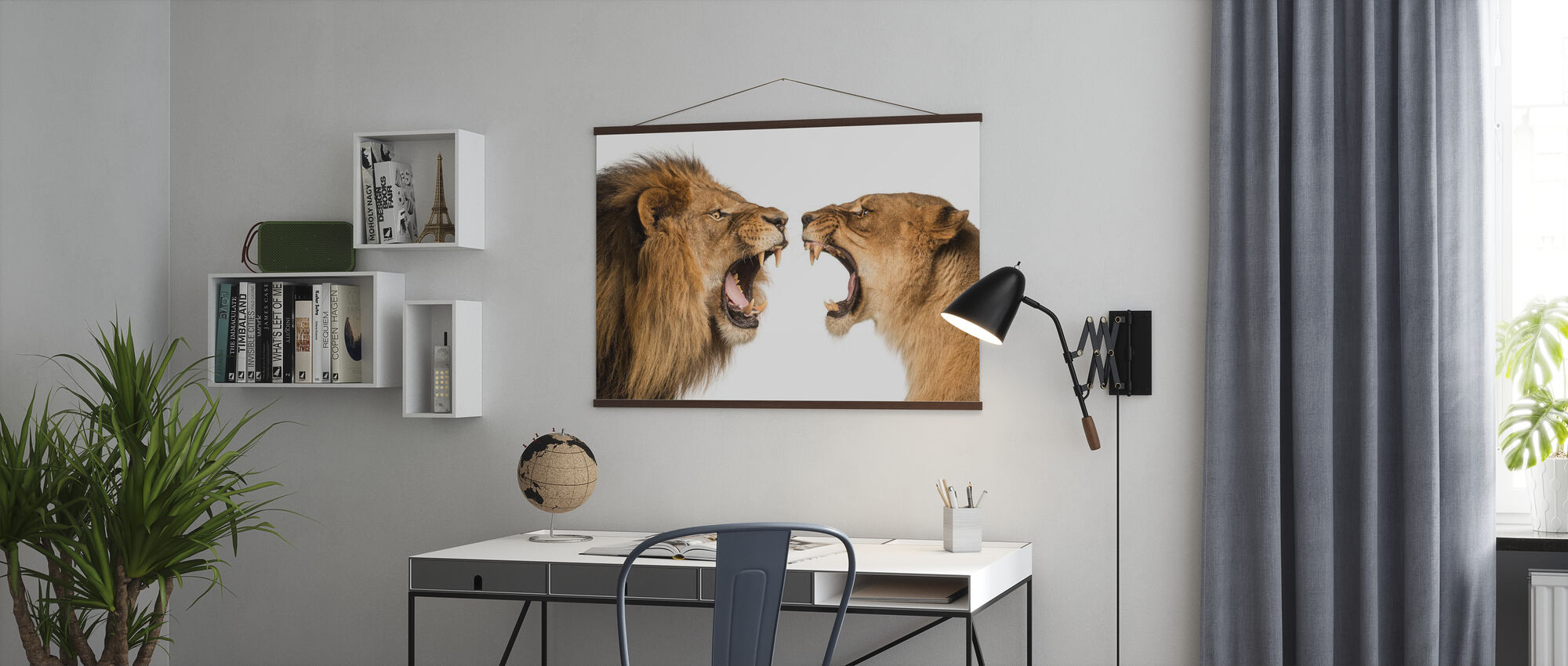 Roaring Lion and Lioness - Poster - Office