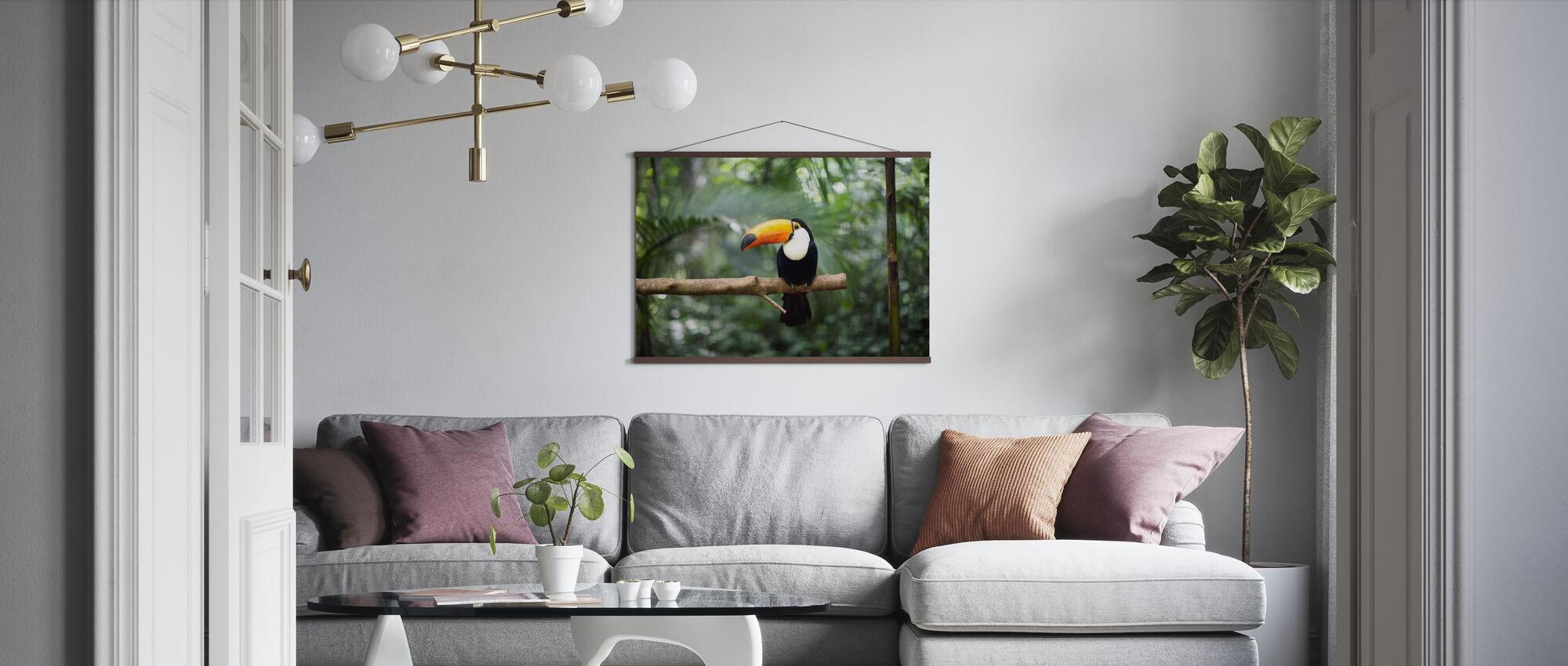 Toucan på grenen - Plakat - Stue