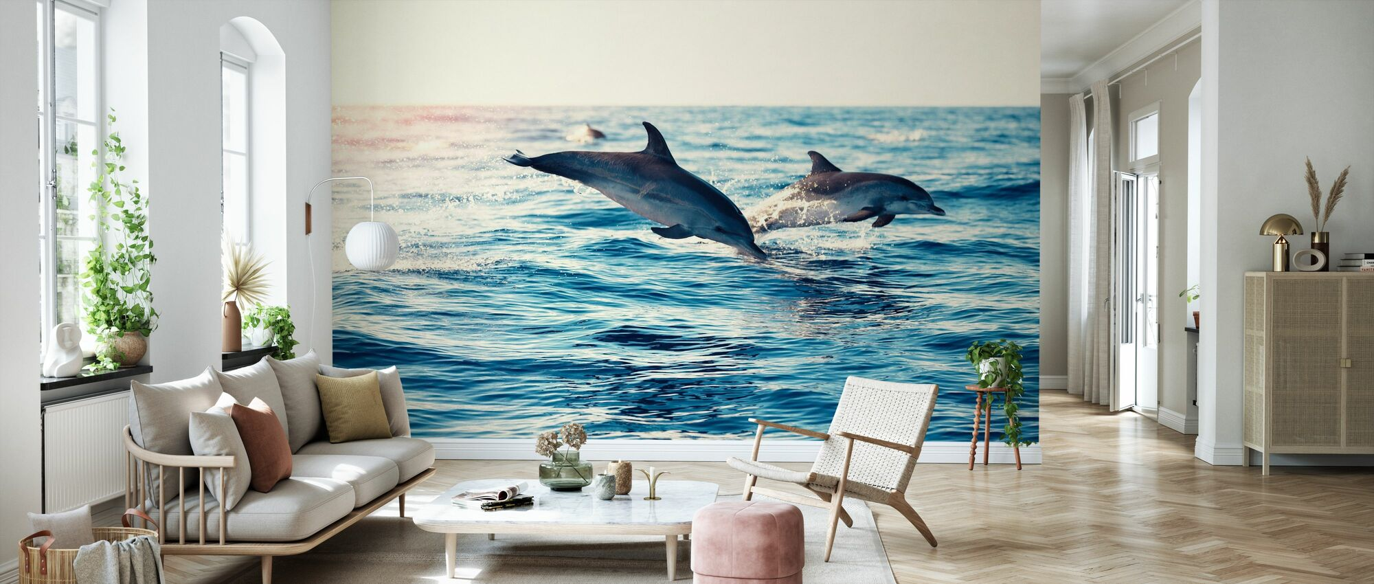 Dolphins Jumping from the Sea - Wallpaper - Living Room