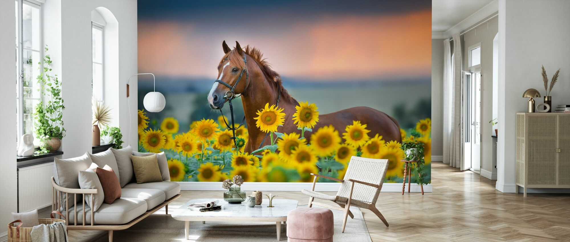 Red horse in Sunflowers Field - Wallpaper - Living Room