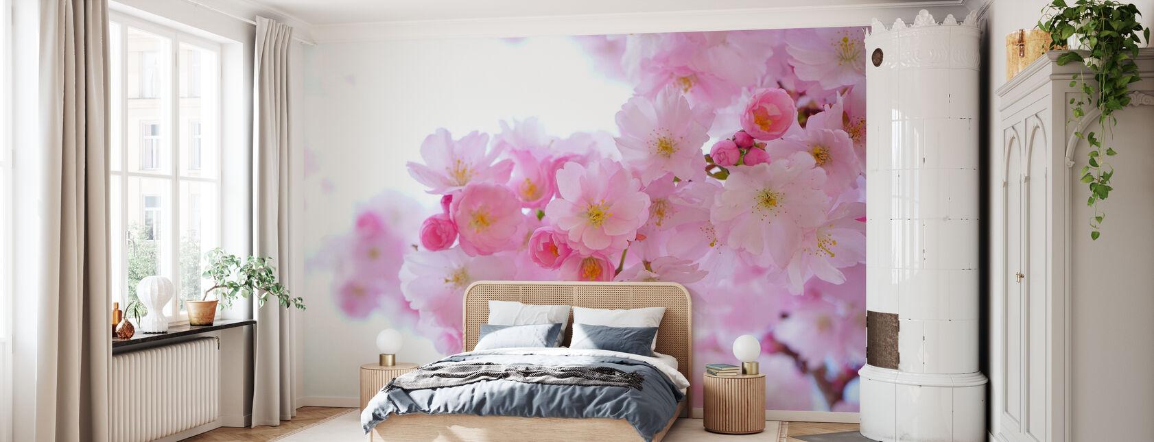 Blossom Cherry Blossom - Wallpaper - Bedroom