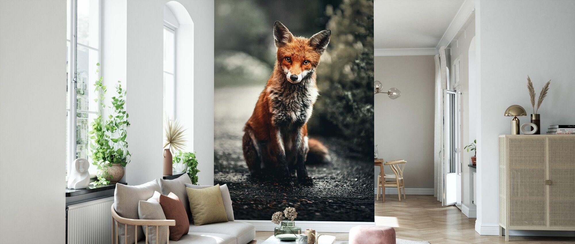 Fox Study - Tapet - Stue
