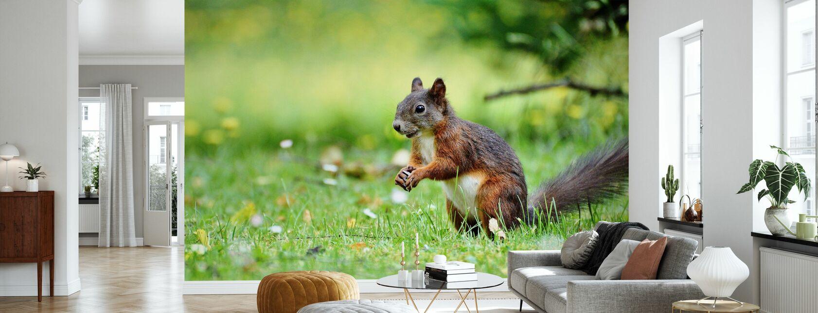 Oravien väestönlaskenta - Tapetti - Olohuone
