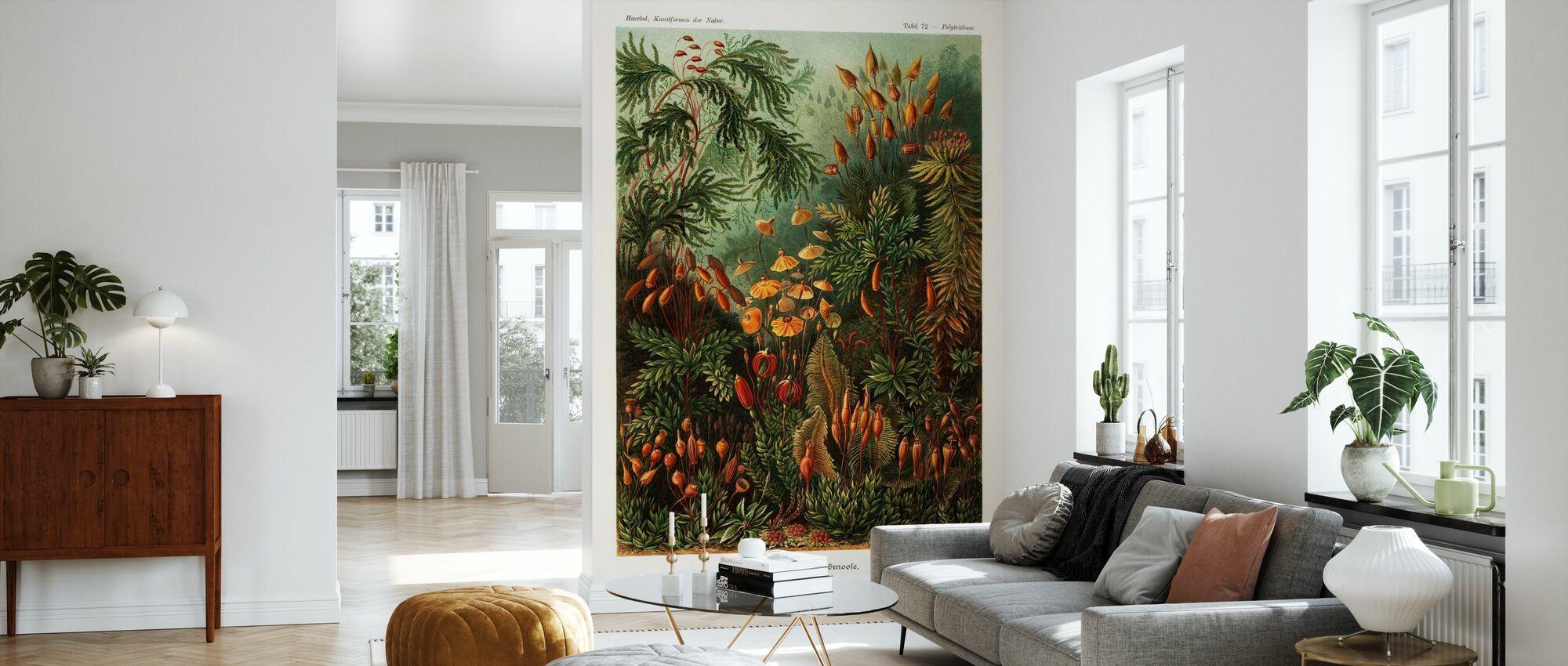 Muscinae Moss Art Forms - Ernst Haeckel - Wallpaper - Living Room