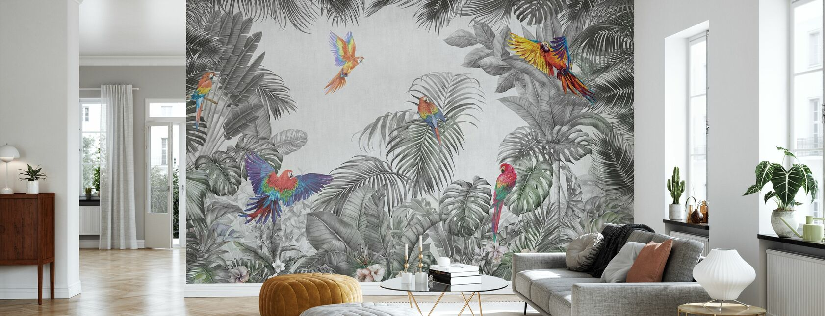 Playing Parrots - Wallpaper - Living Room