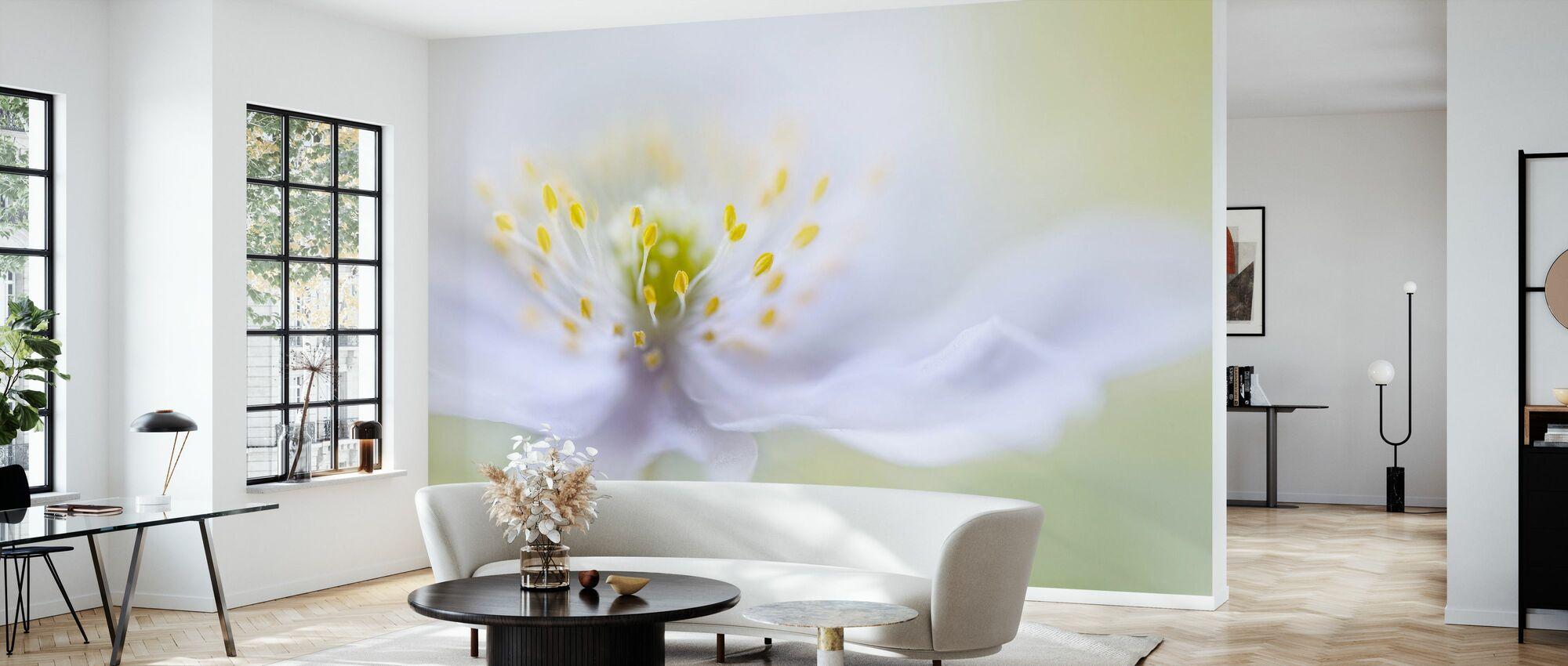 Anemone Beauty - Wallpaper - Living Room