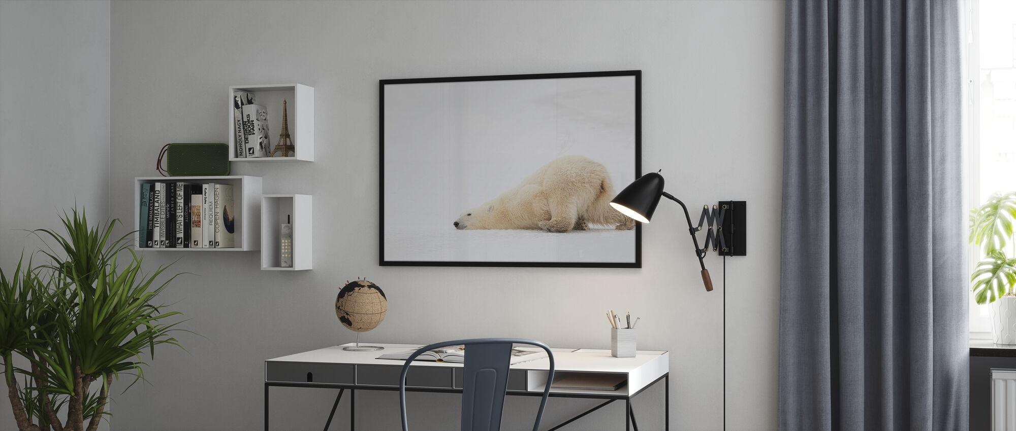 Sliding Bear - Poster - Office
